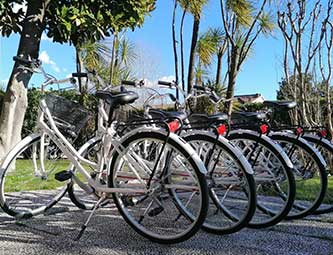 Noleggio bici gratuito